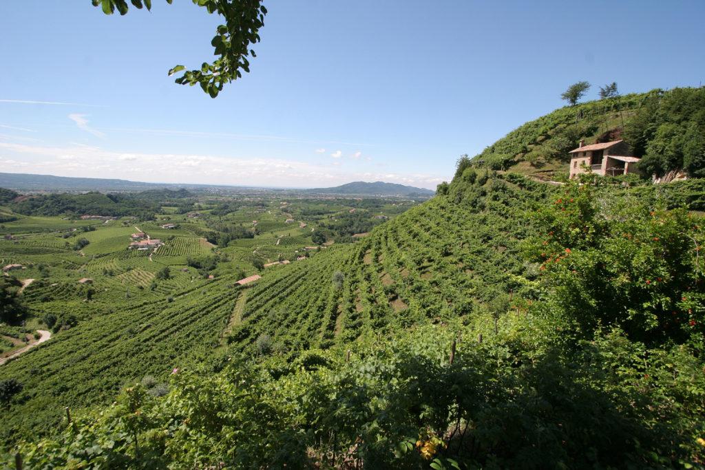Veneto, territorio Col-Vetoraz, Mont del Cartizze