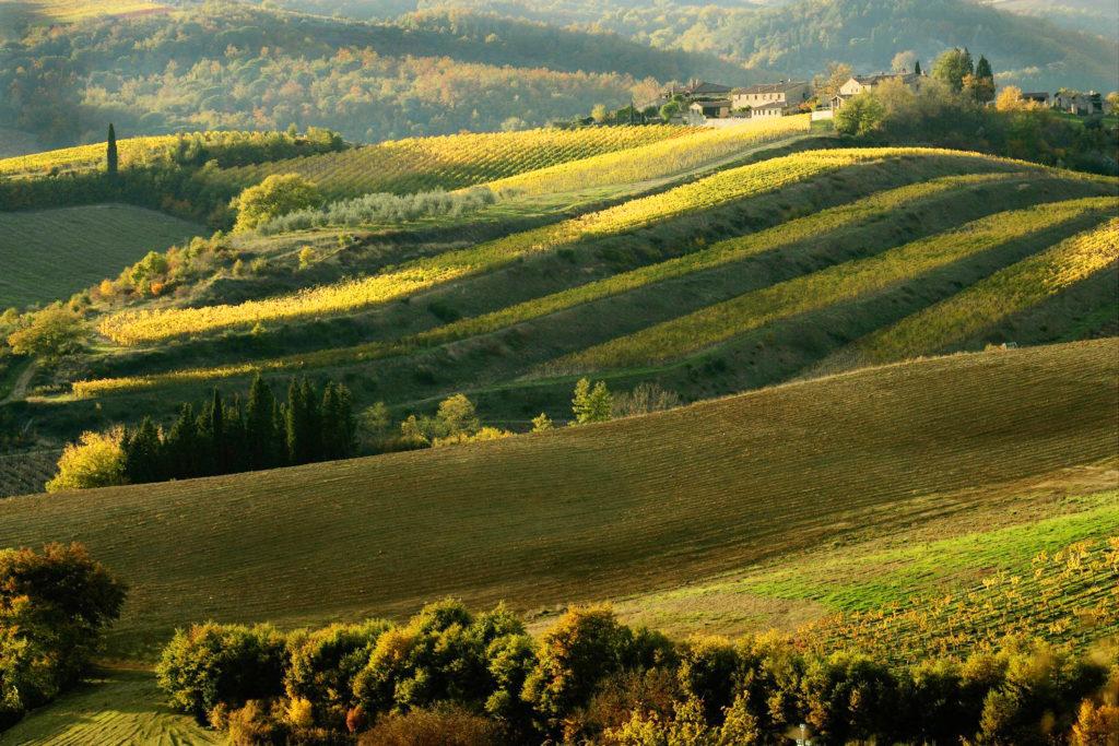 Toscana, le colline del Chianti