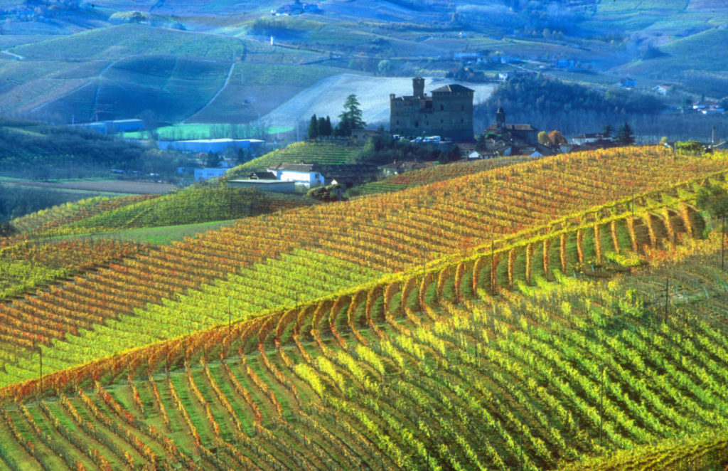 Castello di Grinzane e vigne, Grinzane Cavour