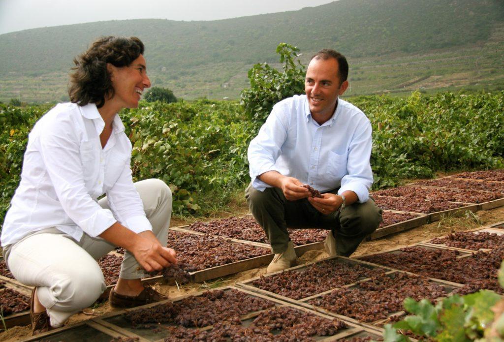 José e Antonio Rallo proprietari dell'azienda Donnafugata, assaporano la dolcissima uva da cui si produce il Ben Ryé, passito di Pantelleria. Foto di Anna Pakula