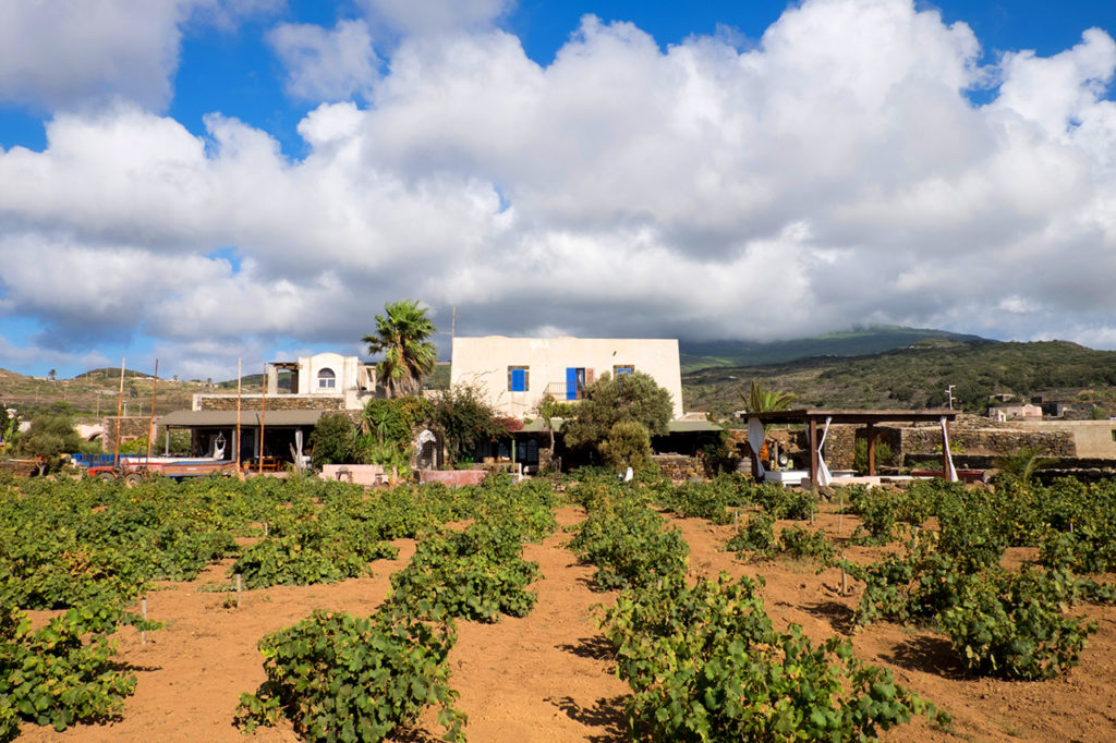 La cantina Bukkuram a Pantelleria. Foto di Pippo Onora
