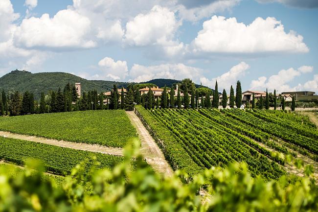Agricola San Felice