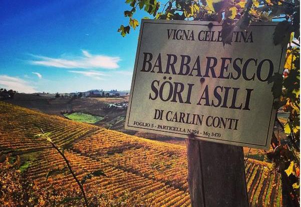 Piemonte, Asili