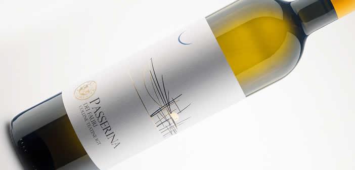 Offida DOC Passerina. Questo meraviglioso vino delle Marche deve essere composto da almeno l'85% dal vitigno Passerina