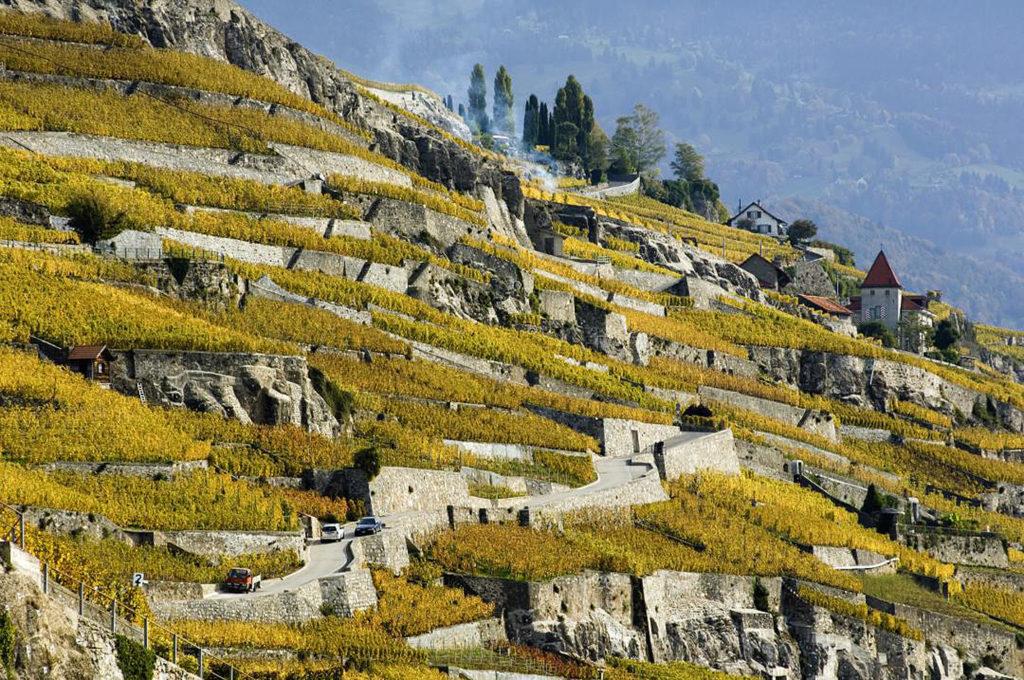 Les terrasses de Lavaux UNESCO © HP Siffert / weinweltfoto.ch