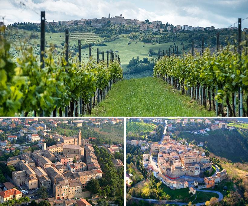 I Castelli di Jesi sono un insieme di comuni della Vallesina attorno alla storica città di Jesi