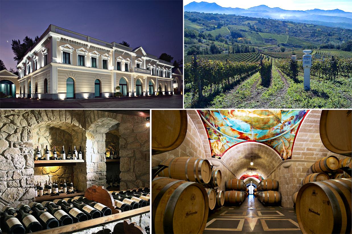 Mastroberadino winery farm